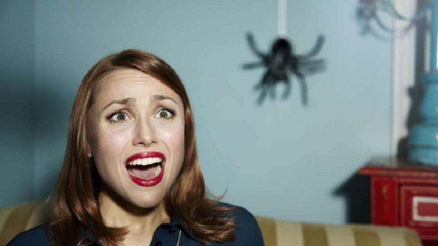 Бояться пауков иль не бояться – вот в чем вопрос! Часть 2.